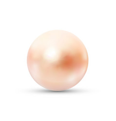 realistic pink pearl with glares and reflection on vector image