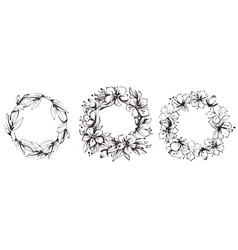 set floral circular frames graceful wreaths of vector image