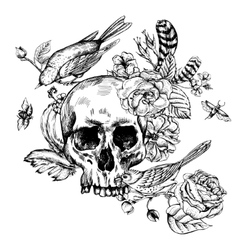 Skull with Flowers Roses Birds and Feathers vector image