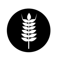Wheat ear icon design vector