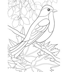 adult coloring bookpage a cute bird on the brunch vector image