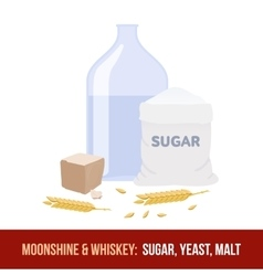 Moonshine and whiskey Ingredients for vector