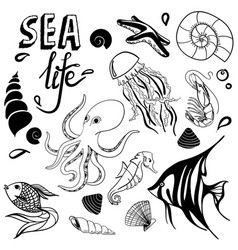 sea life hand drawn sketch with seahorse fish vector image