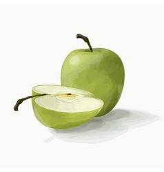 beautiful green apples vector image vector image