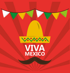 viva mexico hat mustache pennant red background vector image vector image