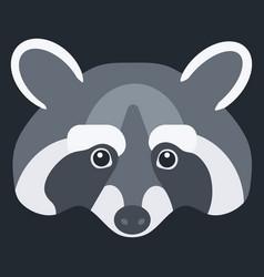 raccoon flat icon vector image