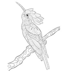 Adult coloring bookpage a cute hoopoe on the vector