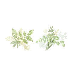 green floral branch hand drawn composition vector image