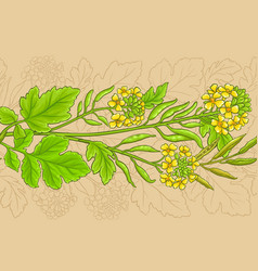 mustard plant pattern on color background vector image