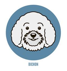 Portrait of bichon vector