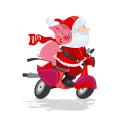 santa claus and pig on a red scooter vector image