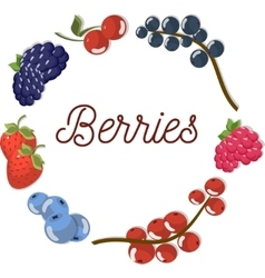 Set two of beautiful flat berries vector image