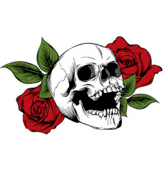Skull with flowers with roses drawing by hand vector