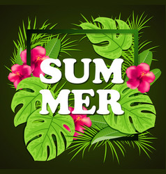 tropical green background vector image vector image