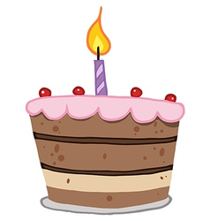 Birthday Cake With One Candle Lit vector image vector image
