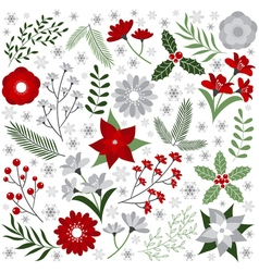Christmas Floral Set vector image