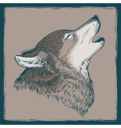 a howling wolf vector image