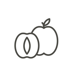 apricot icon outline fruit line apricot s vector image