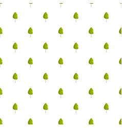 birch tree pattern seamless vector image
