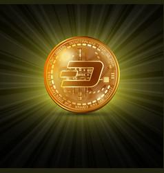 dash golden coin vector image