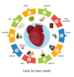 healthy heart foods infographics healthy heart vector image