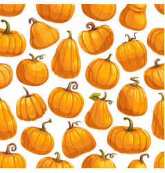 pumpkin vegetables gourds and squashes pattern vector image