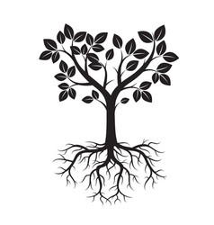shape of black tree and roots vector image