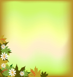 abstract background with maple leaves and flowers vector image vector image