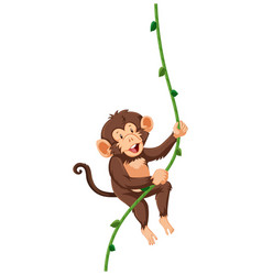 A monkey hanging on vine vector