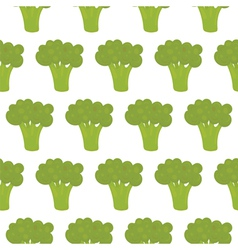 Broccoli seamless pattern vector image