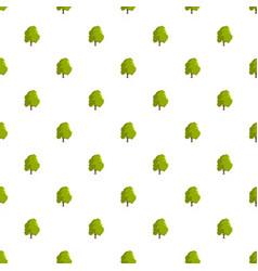 cedar tree pattern seamless vector image
