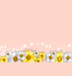 cute background with chamomile flowers can be vector image