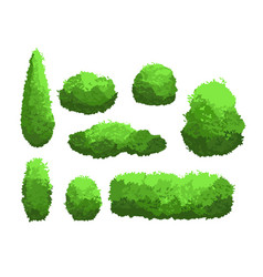 set garden green bushes and vector image