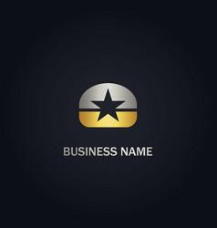 star emblem company gold logo vector image