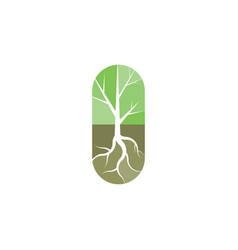 tree with roots logo icon design vector image