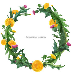 Wreaths from thistle and dandelion for decoration vector