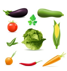 set of icons vegetables vector image vector image