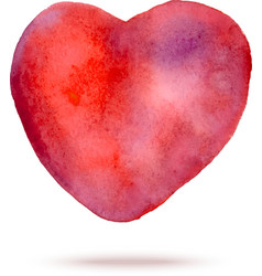 Watercolor hand painted red heart vector image