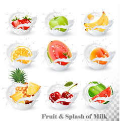 Big collection of fruit in a milk splash vector