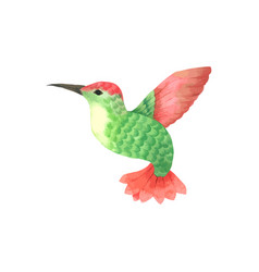 Bird flying watercolor green and red bird painted vector