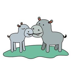 Hippopotamus couple over grass in colorful vector
