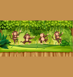monkey in wild forest vector image