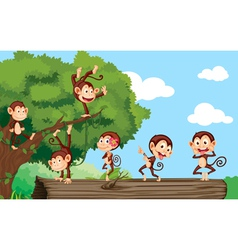 Monkeys in a park vector image