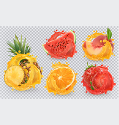 strawberry pineapple orange watermelon peach vector image