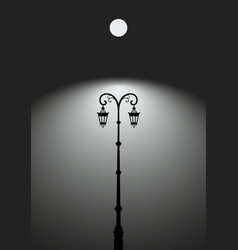 street light lampost under moon vector image