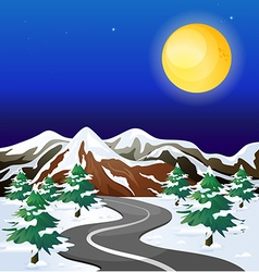 A road in an area with snowflakes vector image vector image