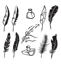 feather pens vector image