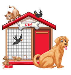 dog cage with animal group cartoon isolated vector image