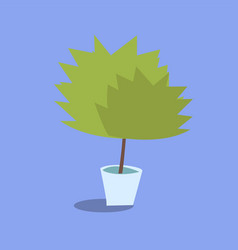 office plant in a pot vector image