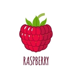 Raspberry icon in flat style on white background vector image